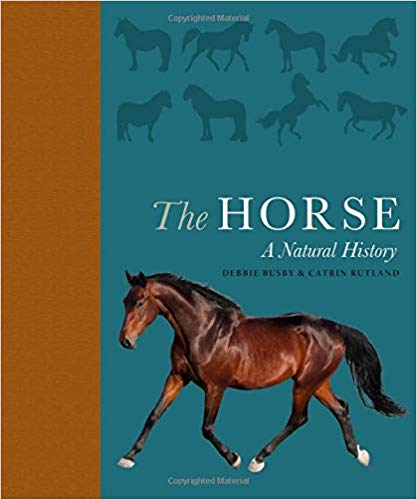 the horse book2